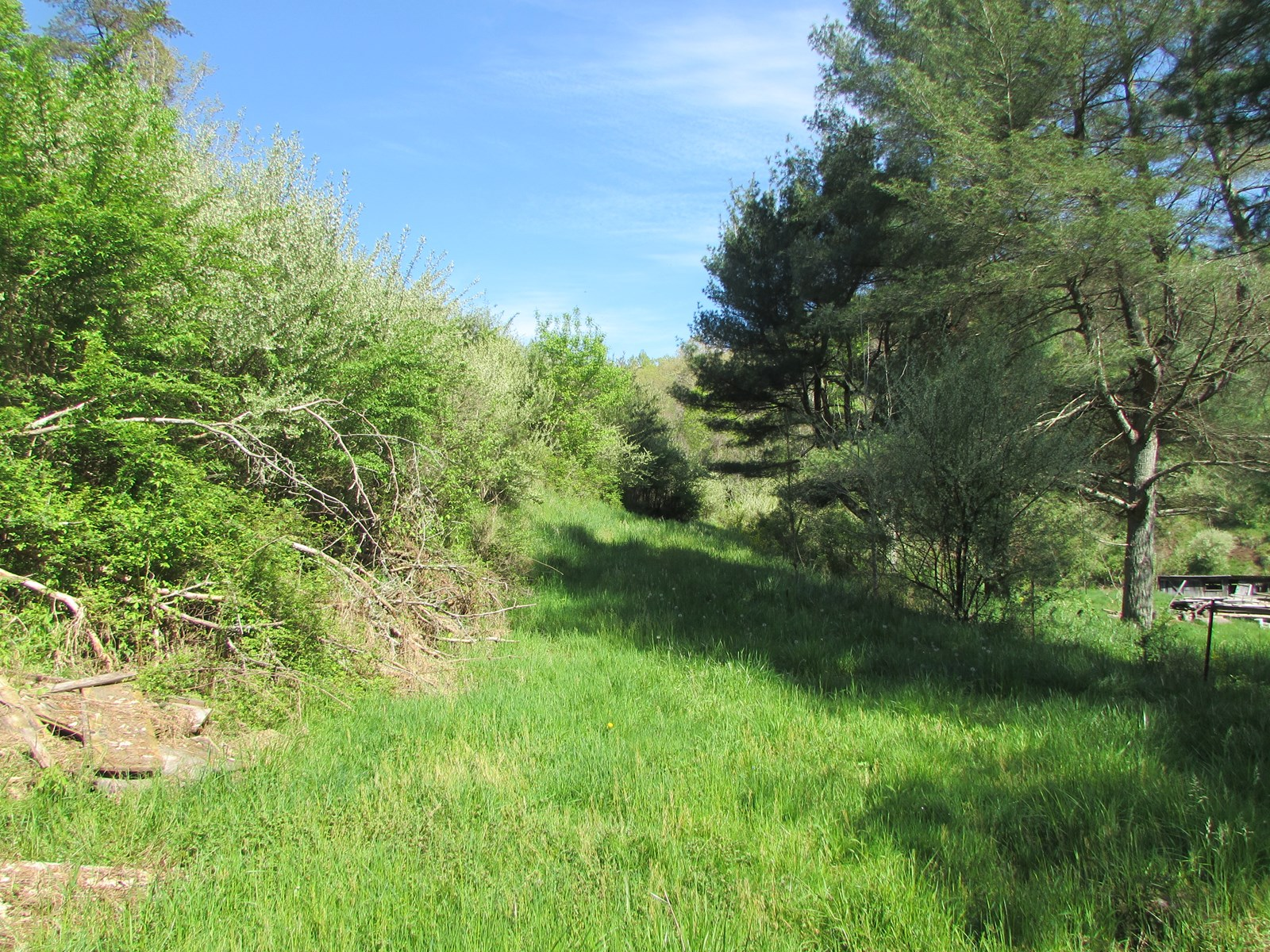 72.5 Acre WV Hunting/Recreational or Residential  Property