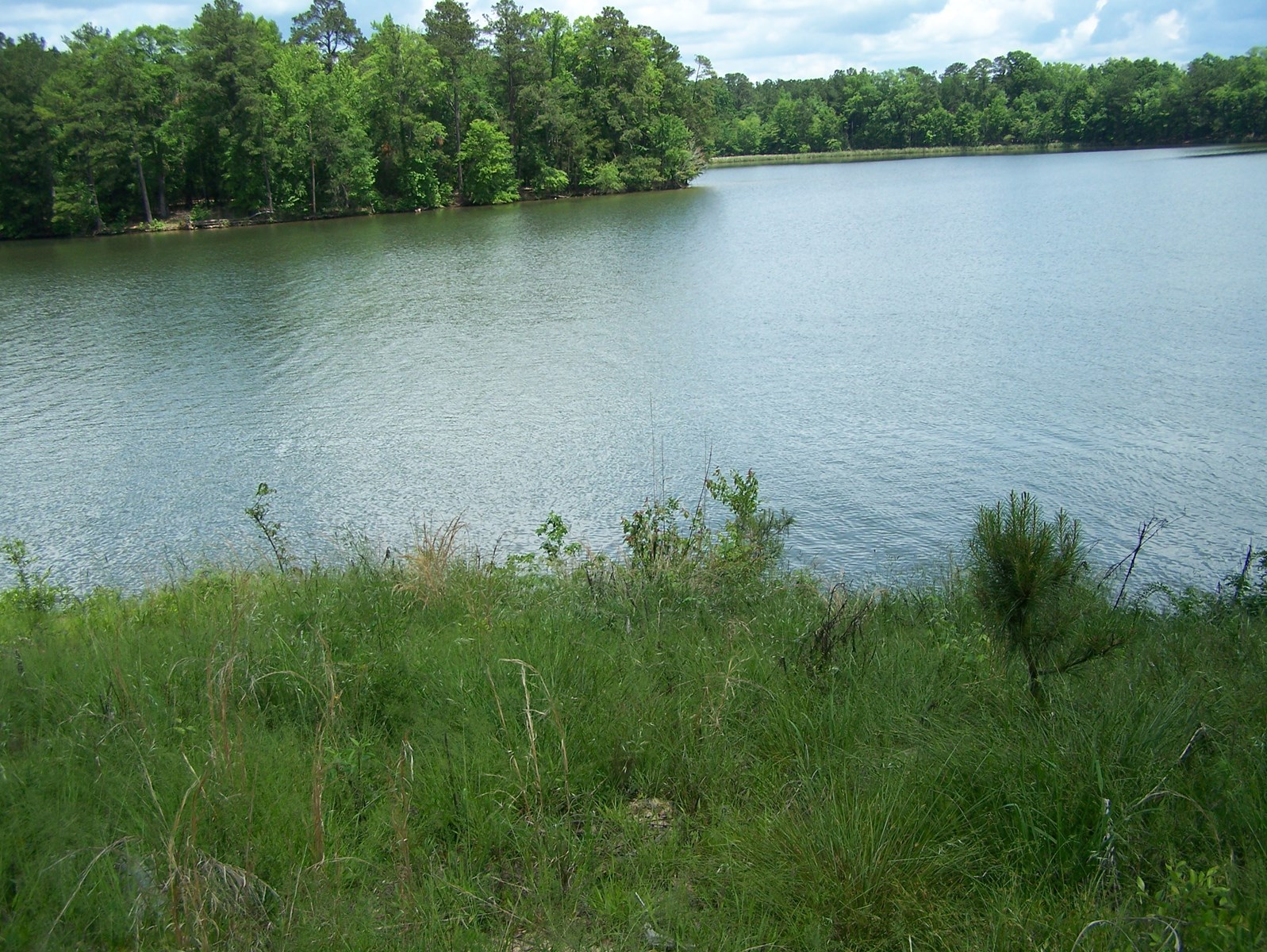 """The Woods at Molly Creek"" Gated Community on Lake Wateree"