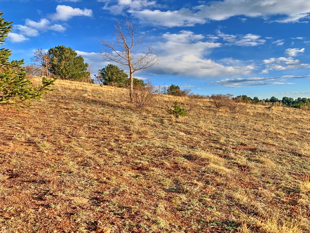 Over 2 Acres With Amazing Mountain Views, Cripple Creek CO