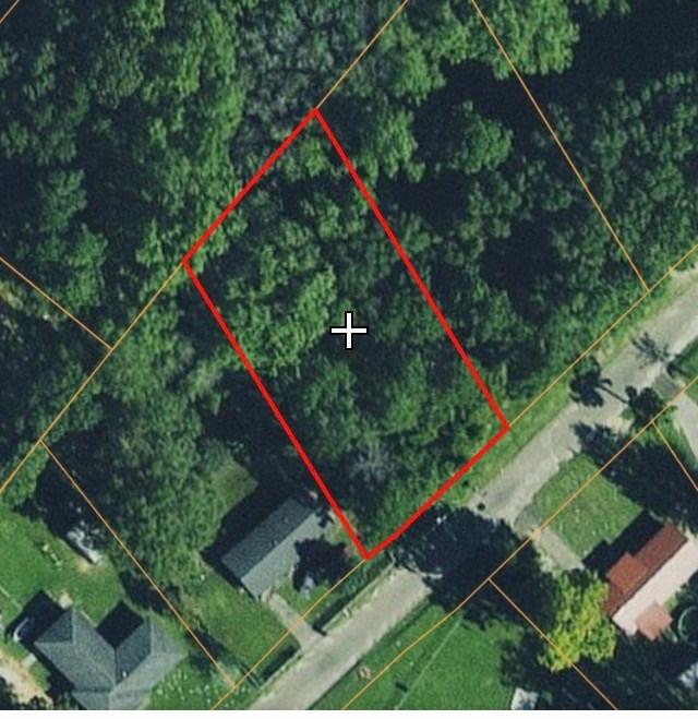 Residental lot for sale in town Geneva, AL