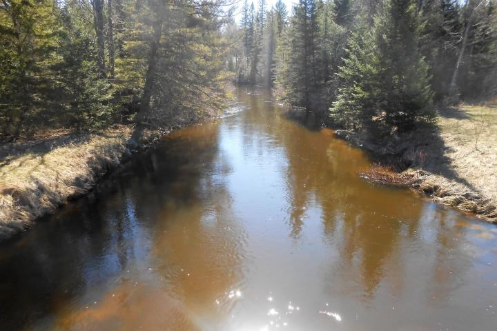 Thunder Bay River 9 Acres For Fishing, Hunting, and Canoeing