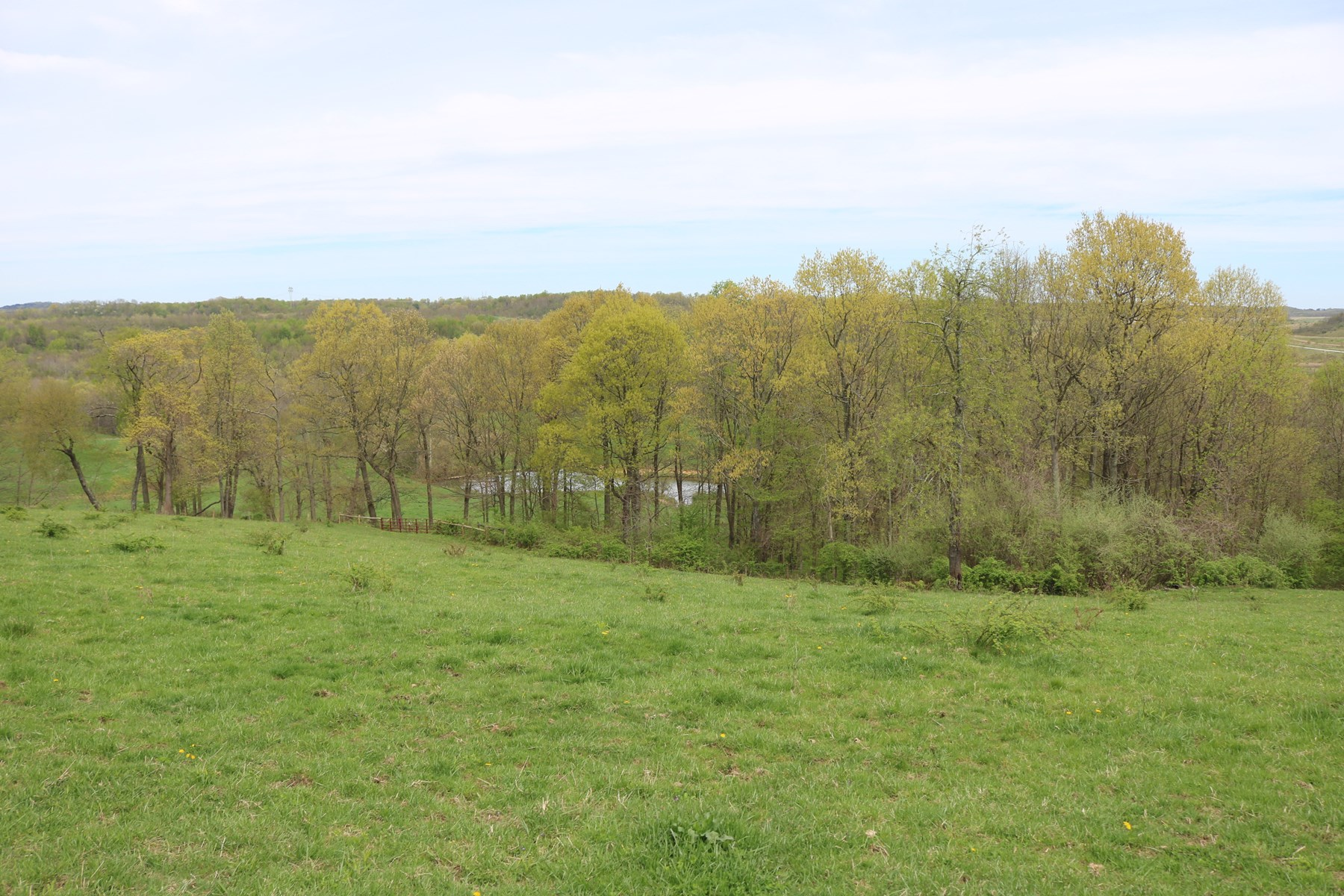 Tract 5 | 54 +/- Acres | Woods/Pond/Pasture | Adjacent to Tri Valley Wildlife Area