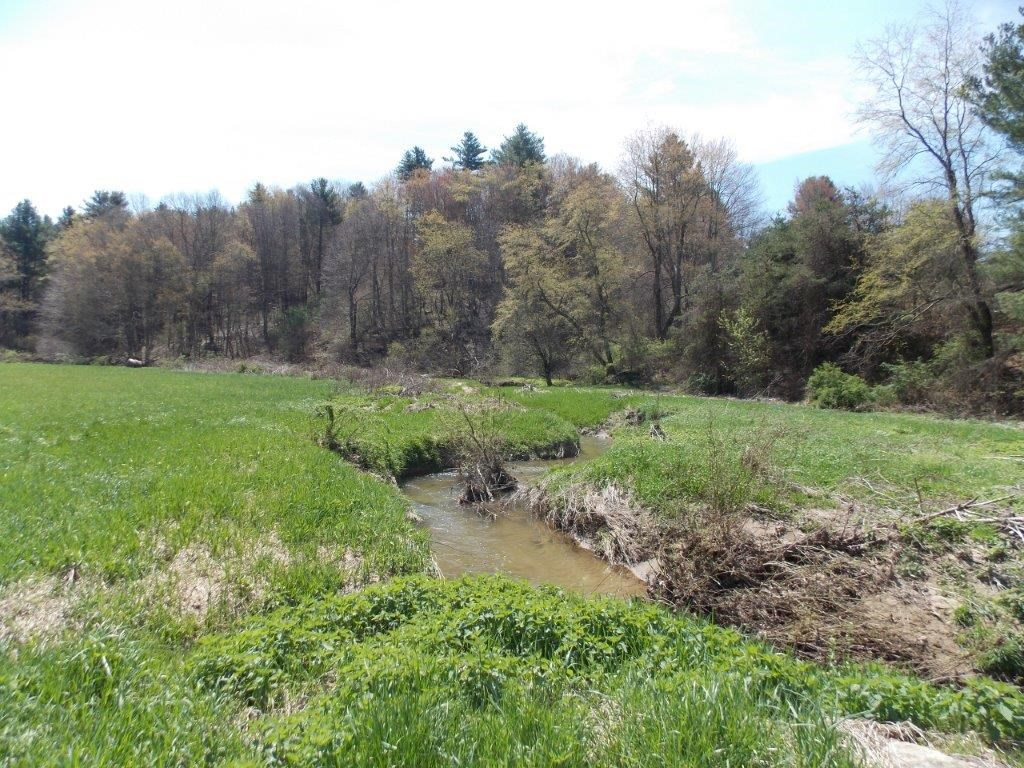 Floyd County VA Land for Sale with Long Range Views & Stream