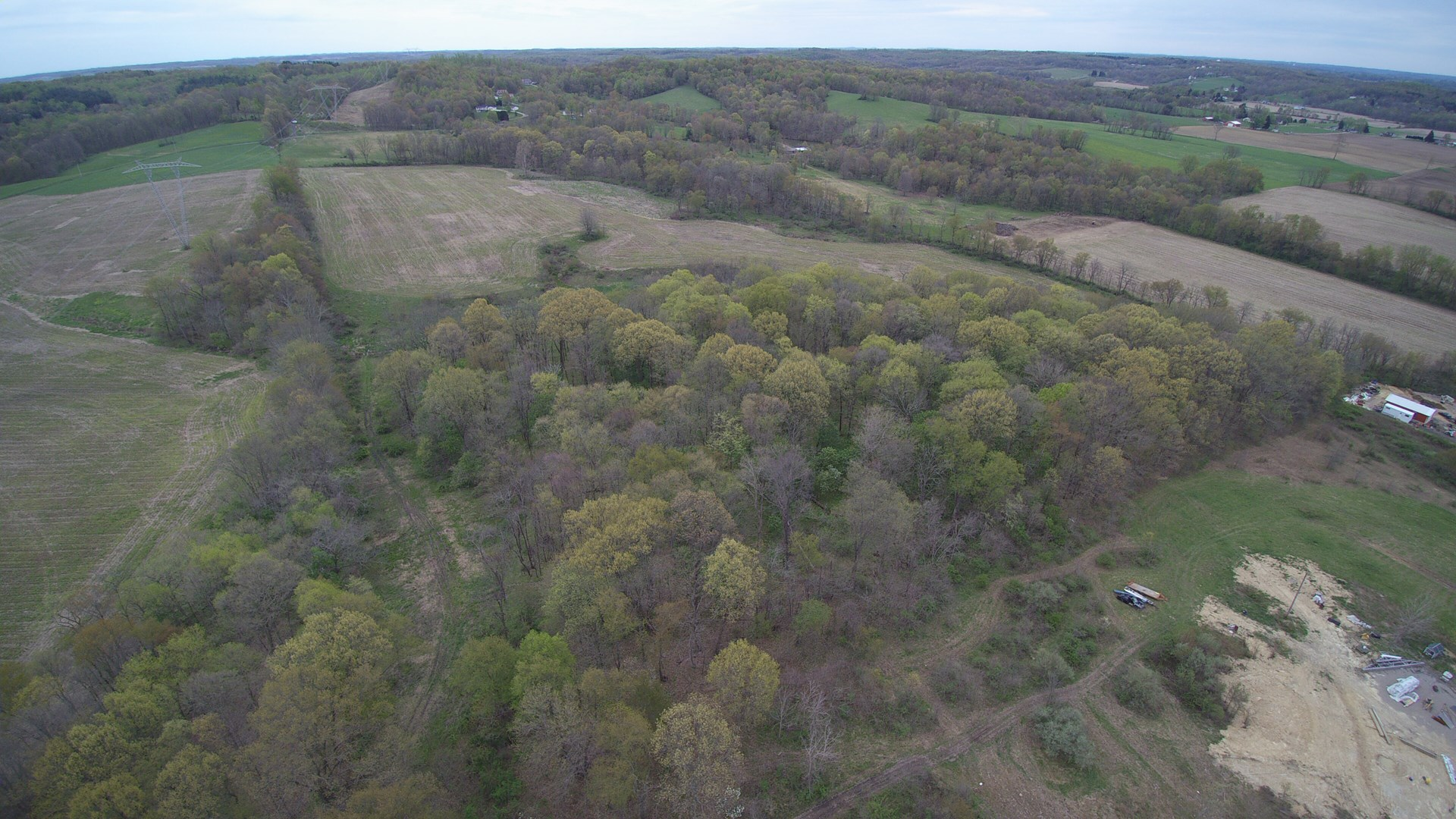 Tracts 9 & 10 | 100 +/- Acres | Recreational Area | Tillable/Mature Woods