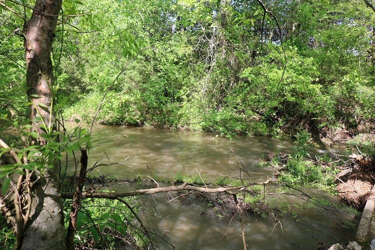 10 ACRES FOR SALE ON FRESH WATER CREEK