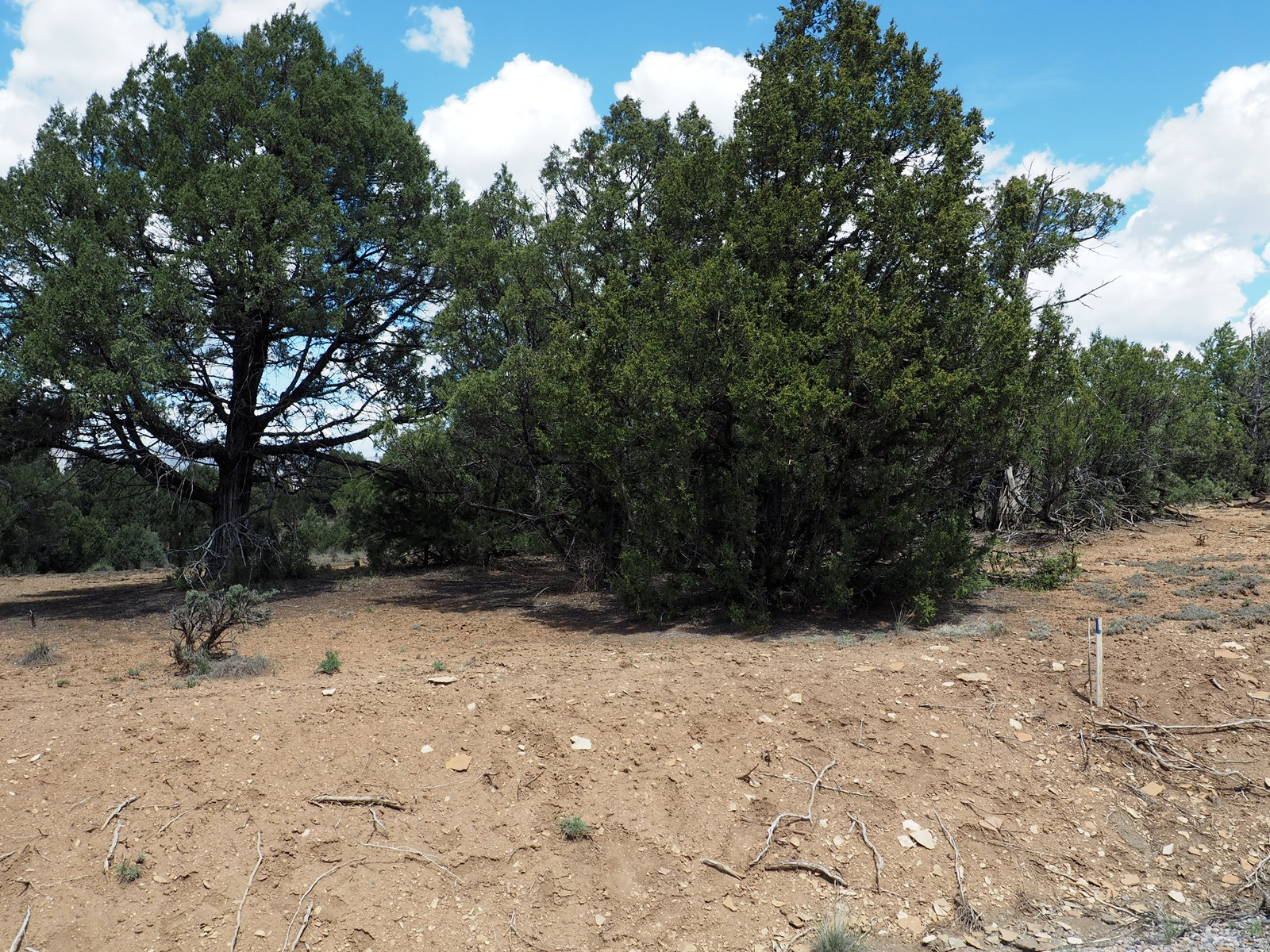 land for sale in Pinon Ridge SD next to El Vado Lake