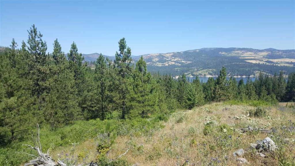 Land for Sale, Lake Roosevelt, Recreation, Hunting