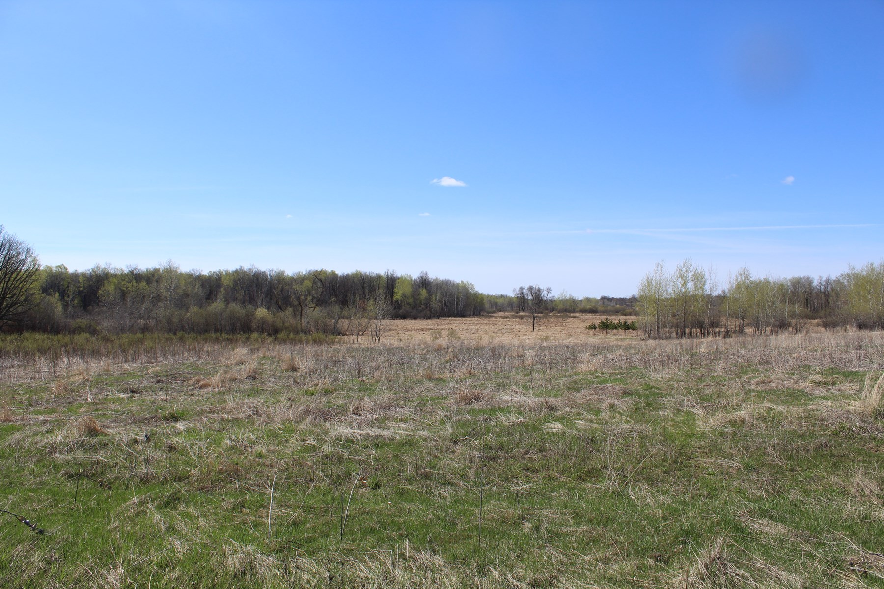 Hunting Land For Sale Kanabec County