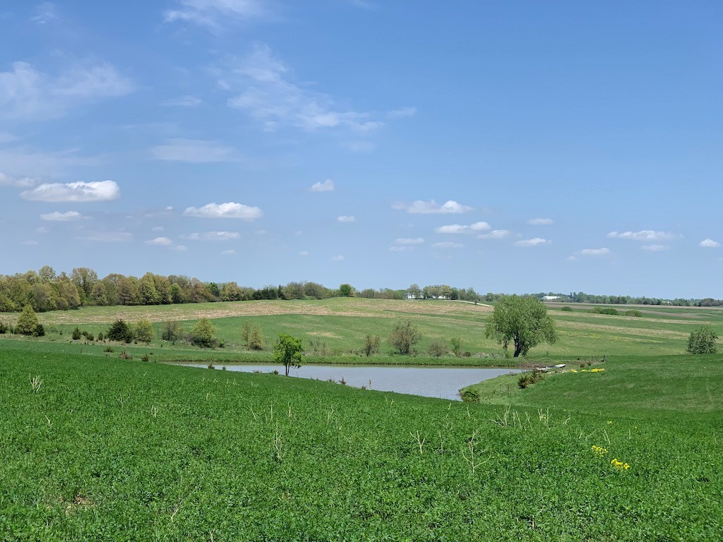 40 Acre Farm For Sale in Southern Iowa Ringgold County