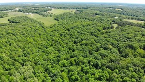 HUNTING PROPERTY WITH CABIN FOR SALE CAPE GIRARDEAU COUNTY