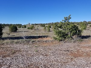 EDGEWOOD NM INVESTMENT PROPERTY COMMERCIAL DEVELOPMENT
