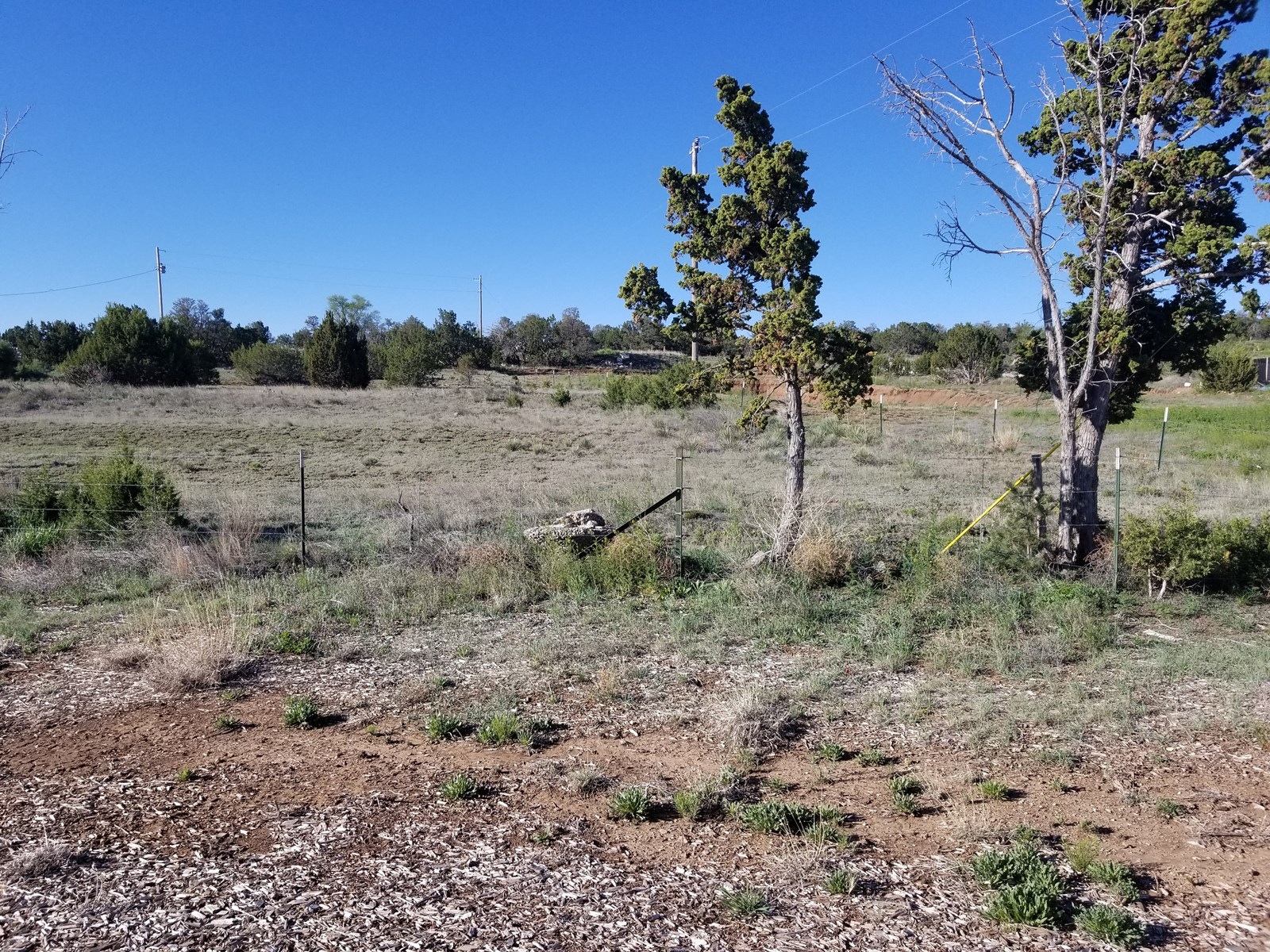 Edgewood NM Commercial Land Investment Property For Sale