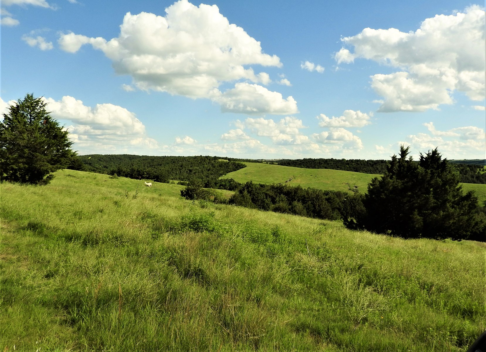 Deer, Turkey, Elk Hunting & Pastureland For Sale, Central NE