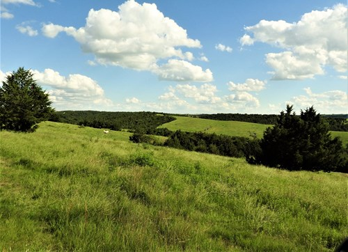 NEBRASKA HUNTING & CATTLE PASTURE PROPERTY FOR SALE