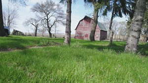 80+/- ACRES OF CROPLAND & ACREAGE SITE IN LAKE CO, SD