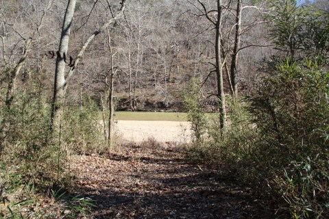 KINGS RIVERFRONT LAND FOR SALE IN ARKANSAS
