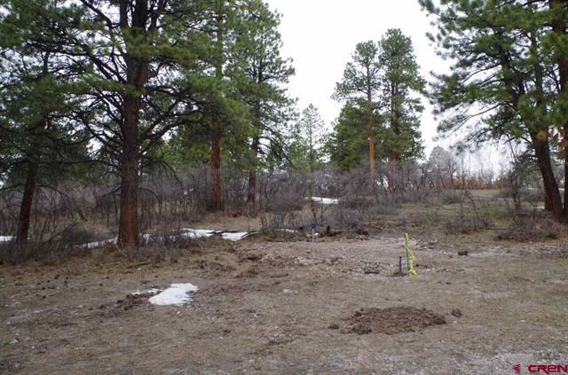 Colorado Lot For Sale, Close to National Forest