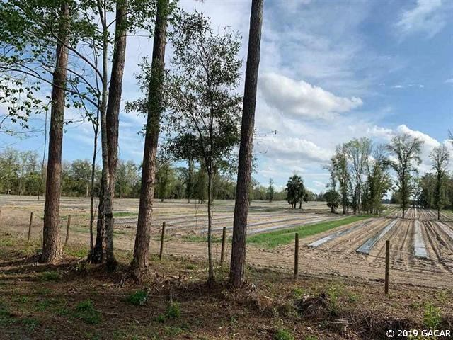 30 ACRES OF VACANT LAND - NEWBERRY FLORIDA ALACHUA COUNTY