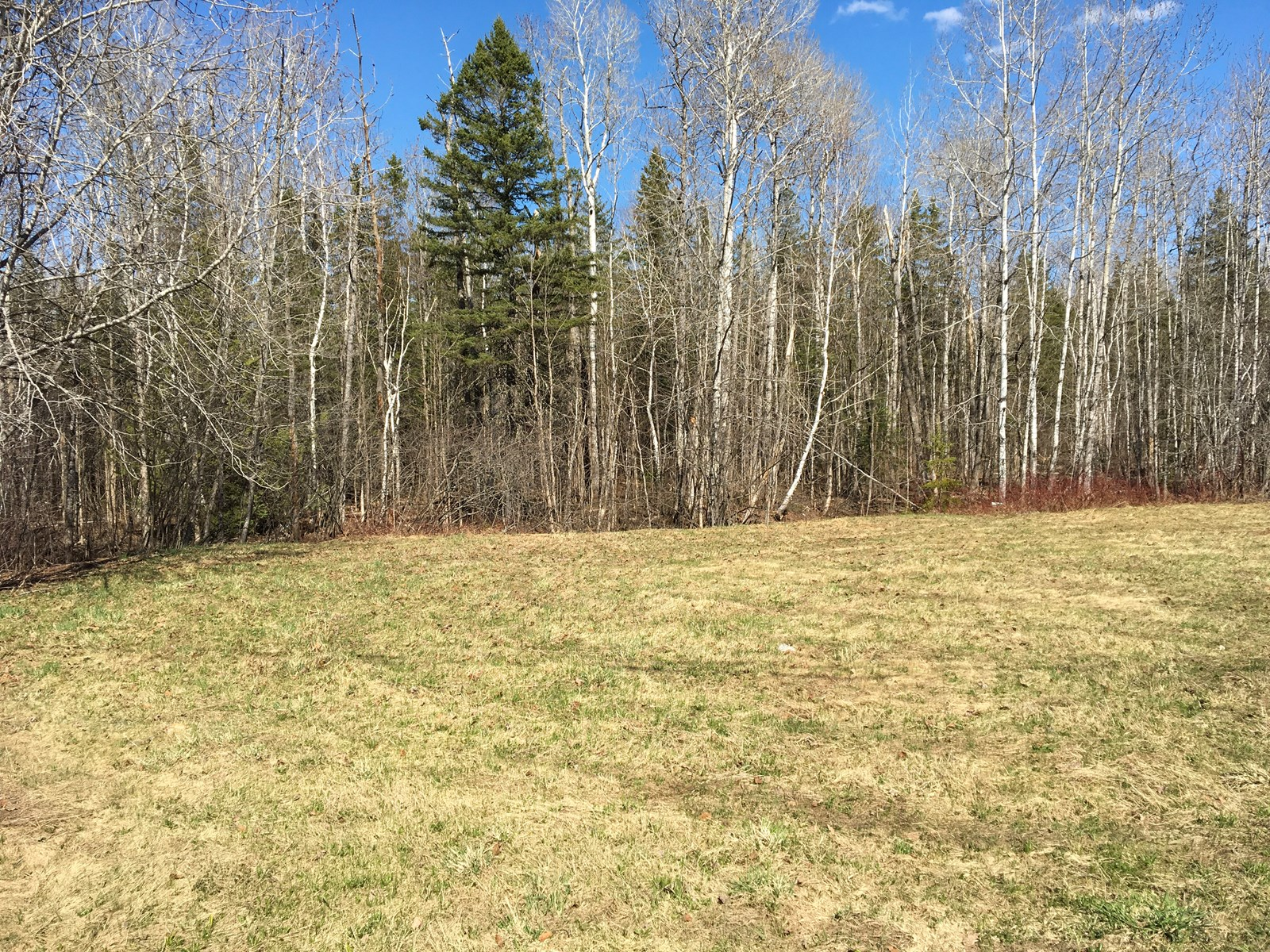 Land for Sale in Presque Isle, Maine
