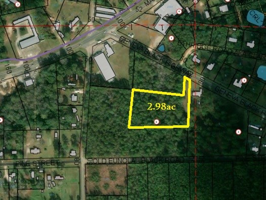 2.98 ACRES E COUNTY ROAD 4, GENEVA, AL