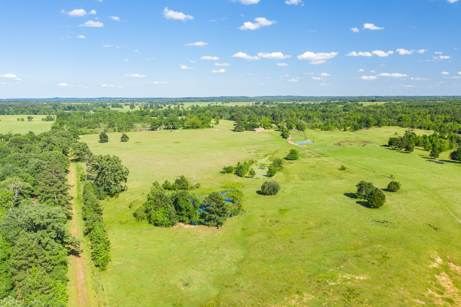 East Texas Land For Sale In Smith County Near Winona & Tyler
