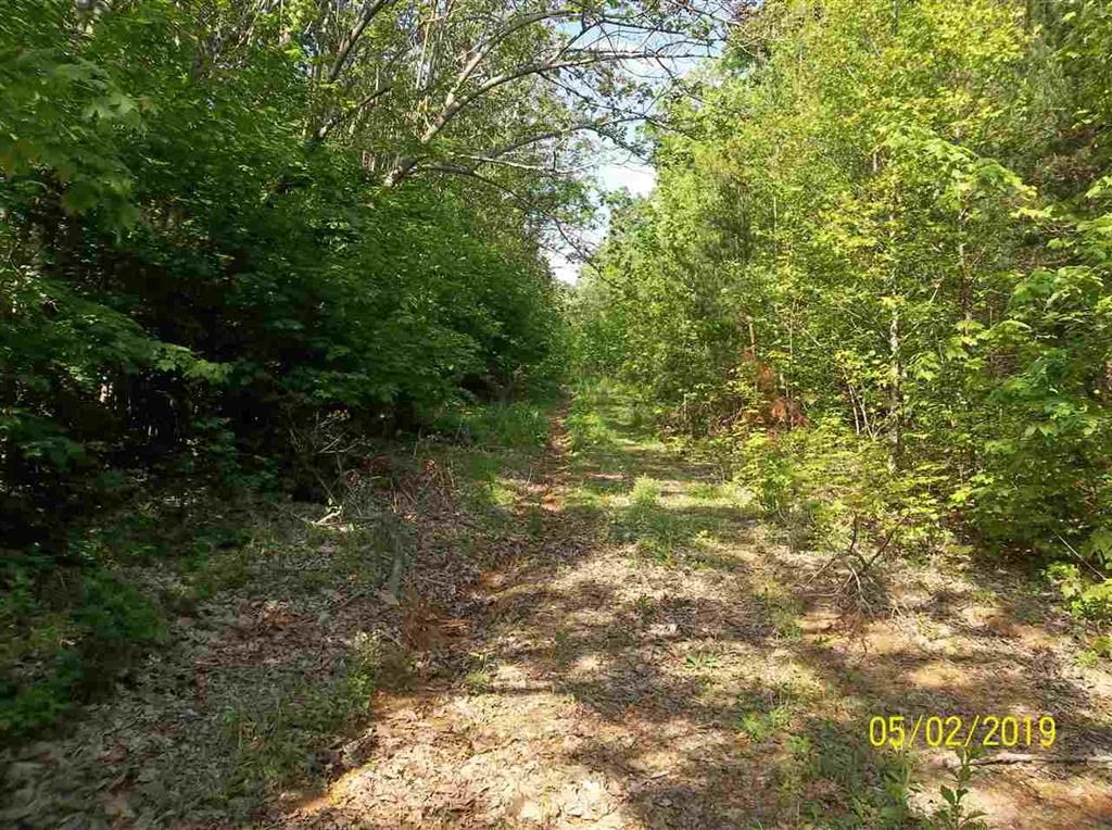 31.5 Mostly Wooded Acres in Hawkins Co., TN