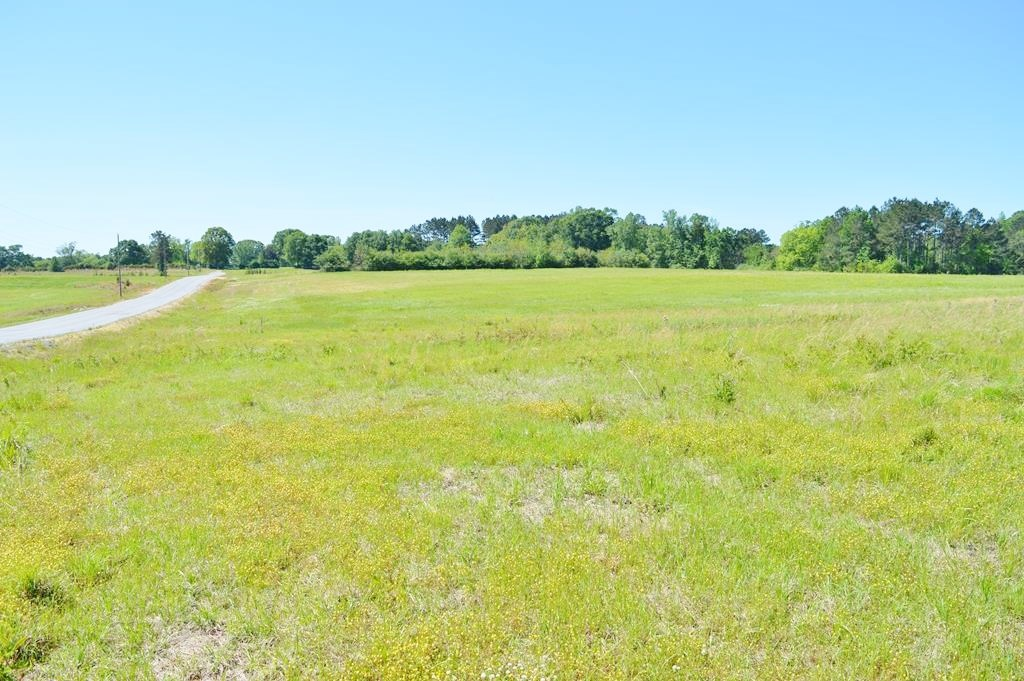 Development Property by Golf Course for Sale Pike County MS