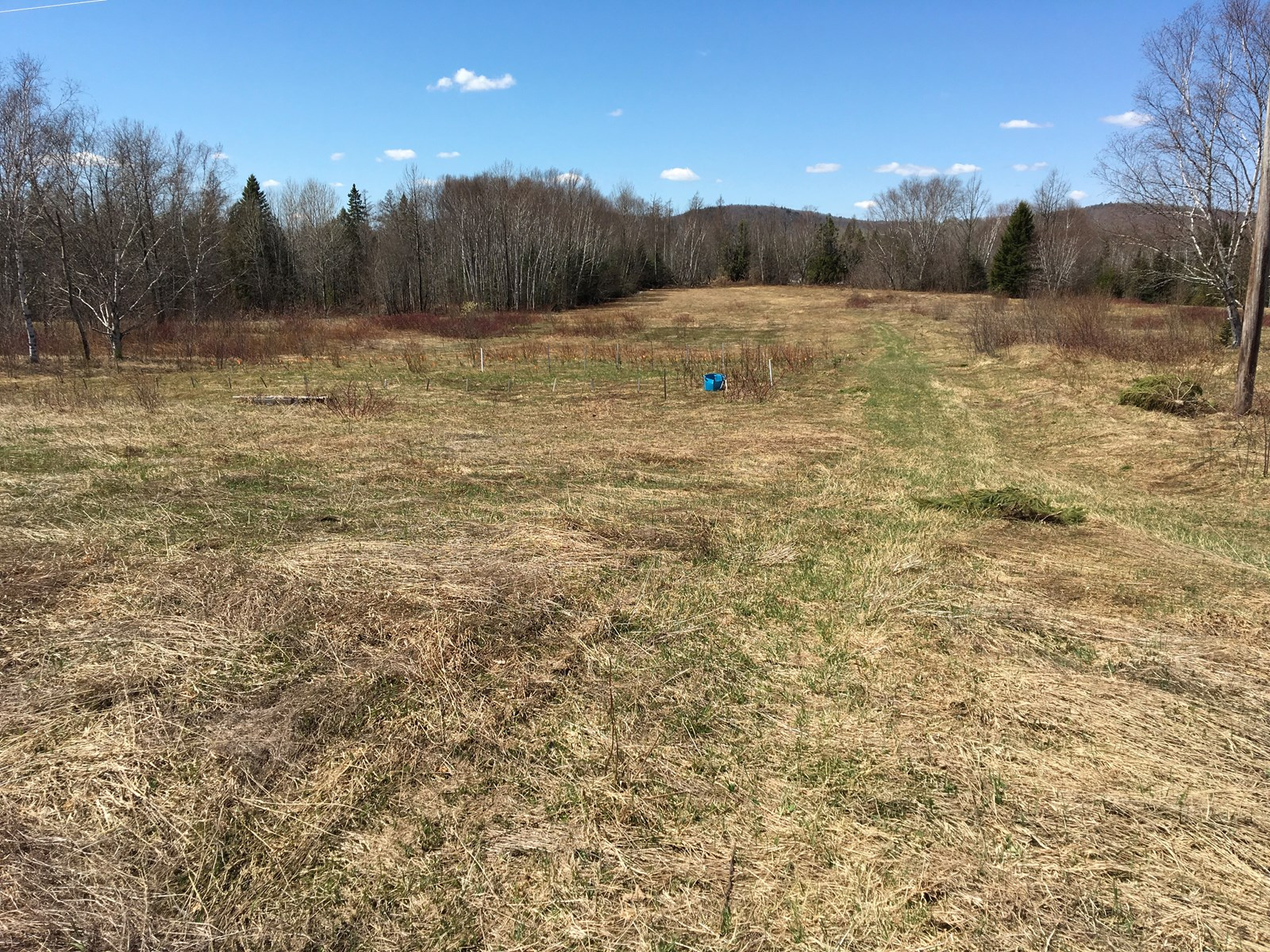 Land for Sale in Mars Hill, Maine