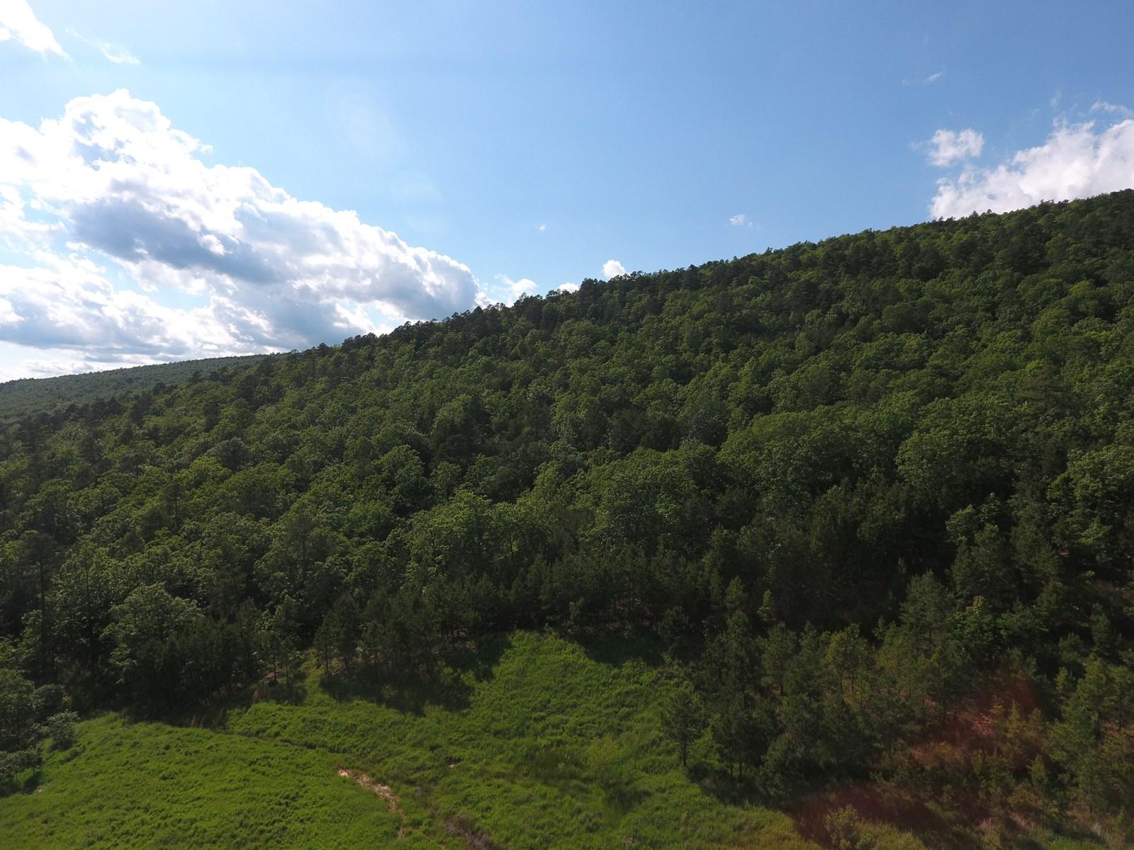 760 Acres, Mountain Land in SE OK