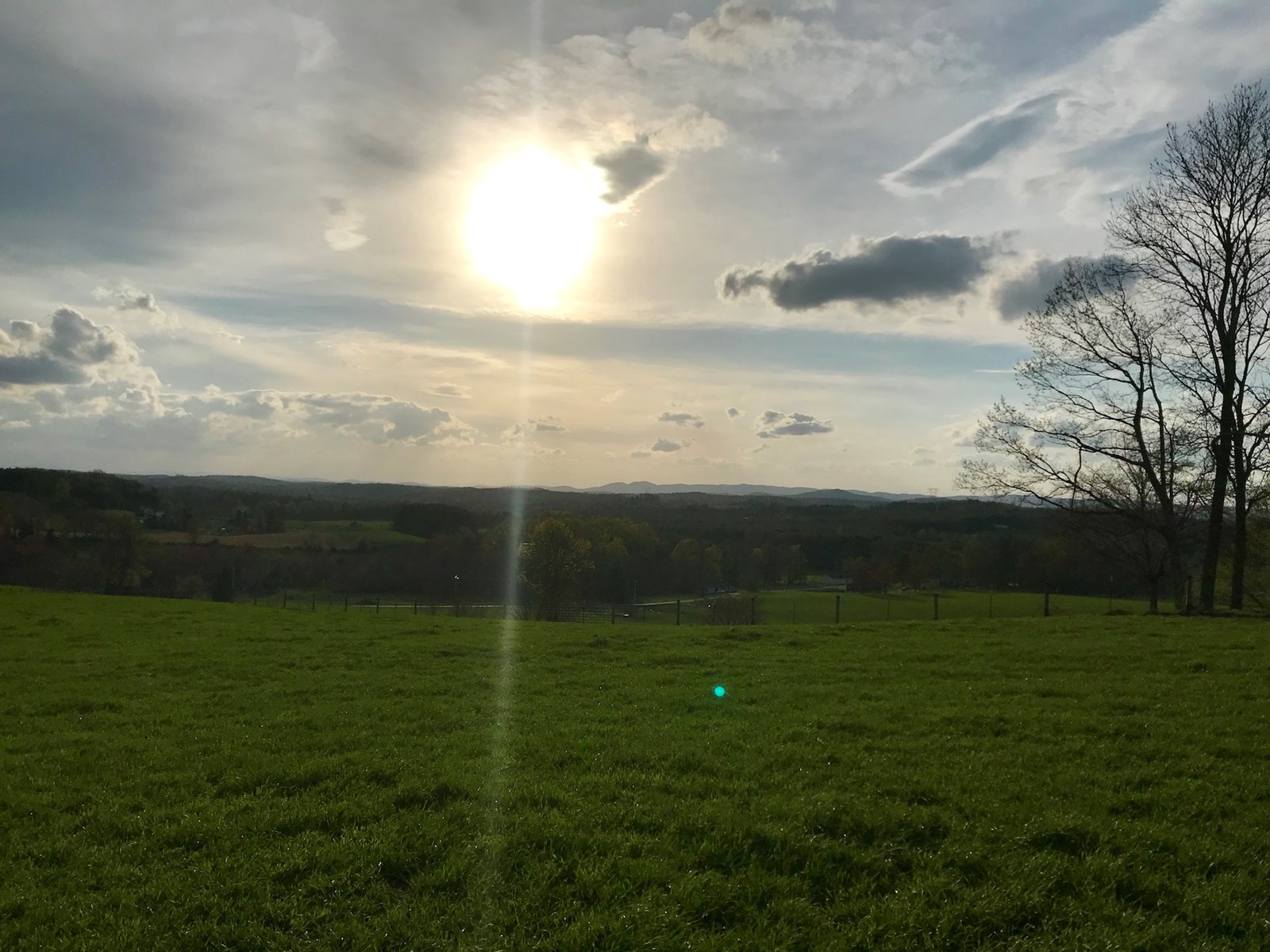 Gorgeous Farm Land for Sale in Willis VA