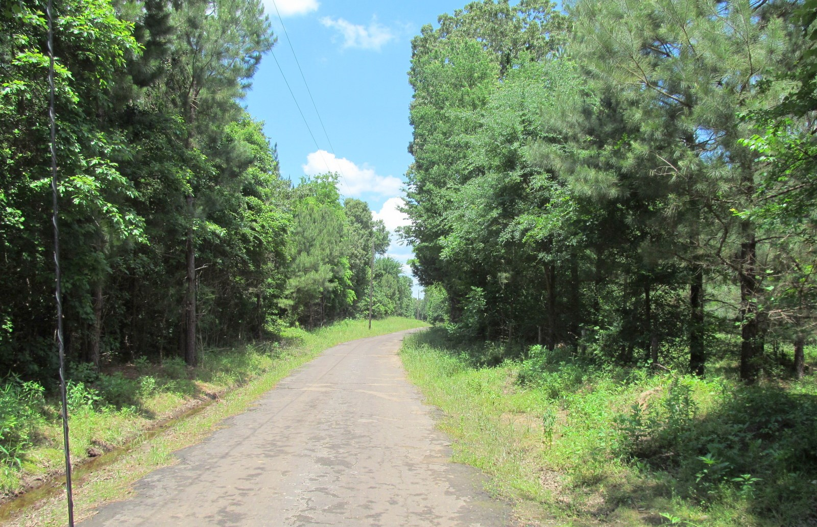 EAST TEXAS 218 ACRES - CAMP COUNTY - PITTSBURG - HUNT/BUILD