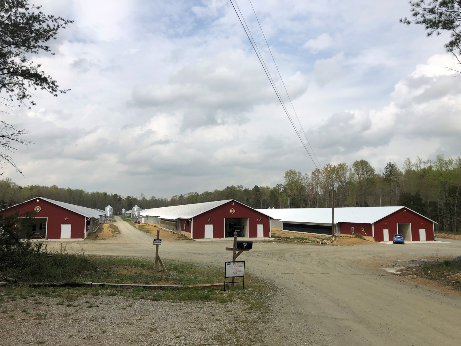 Breeder Poultry Farm, Davidson County, Lexington, NC