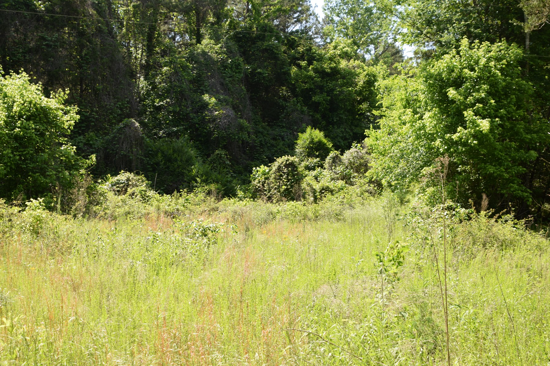 Savannah, Tennessee, Hardin County, Residential Lot, Creek