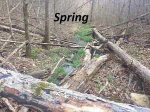 OFF GRID IN THE OZARK MOUNTAIN FOR SALE