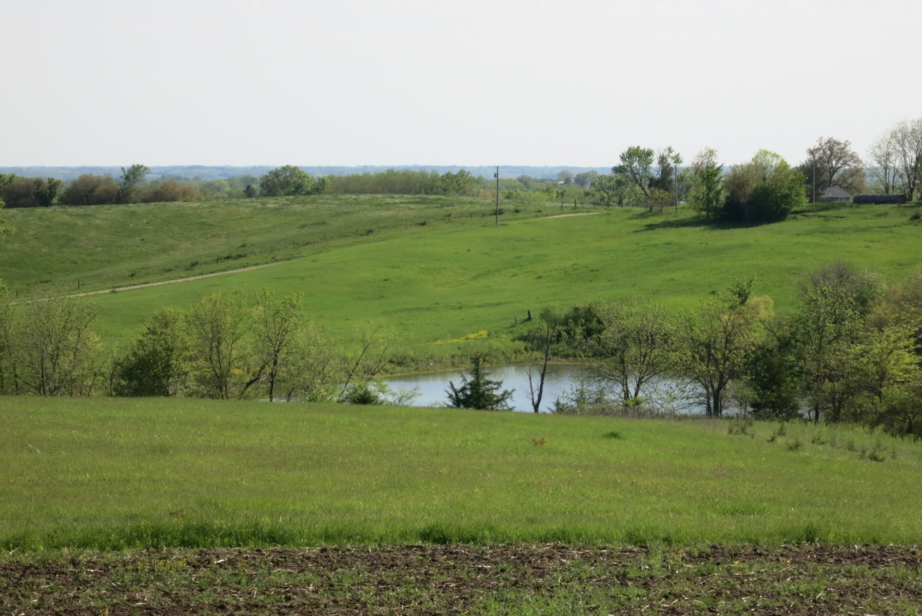 CRP Farm with Hunting Opportunity in Northwest Missouri