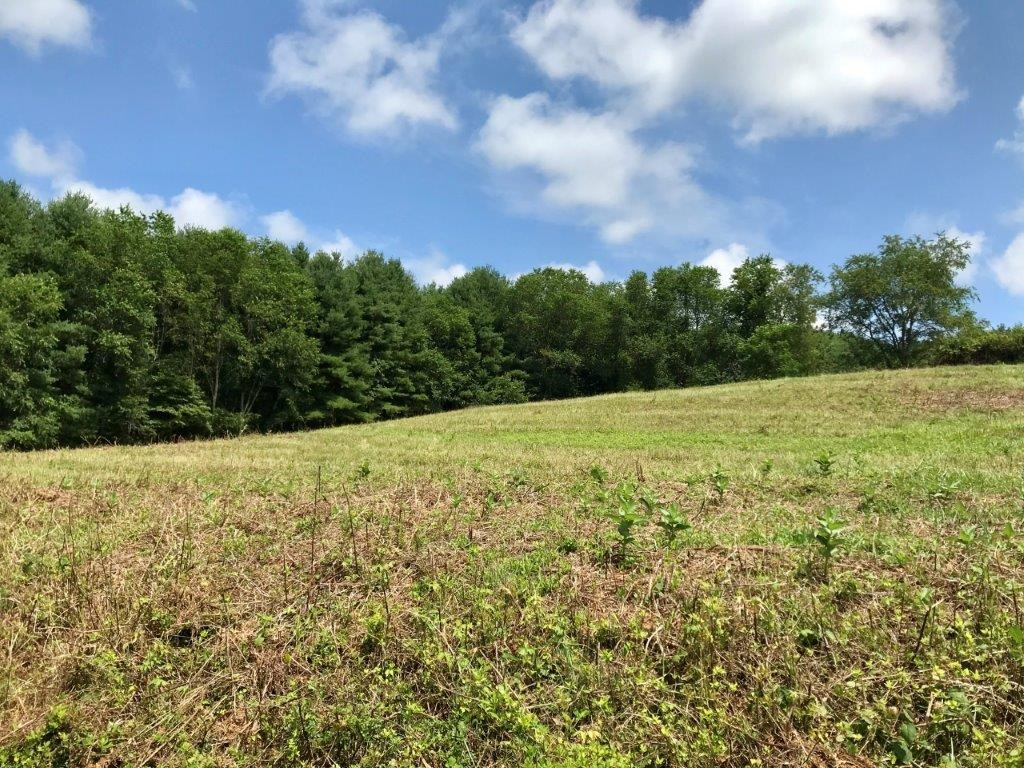 Building Lot for Sale in Hillsville VA