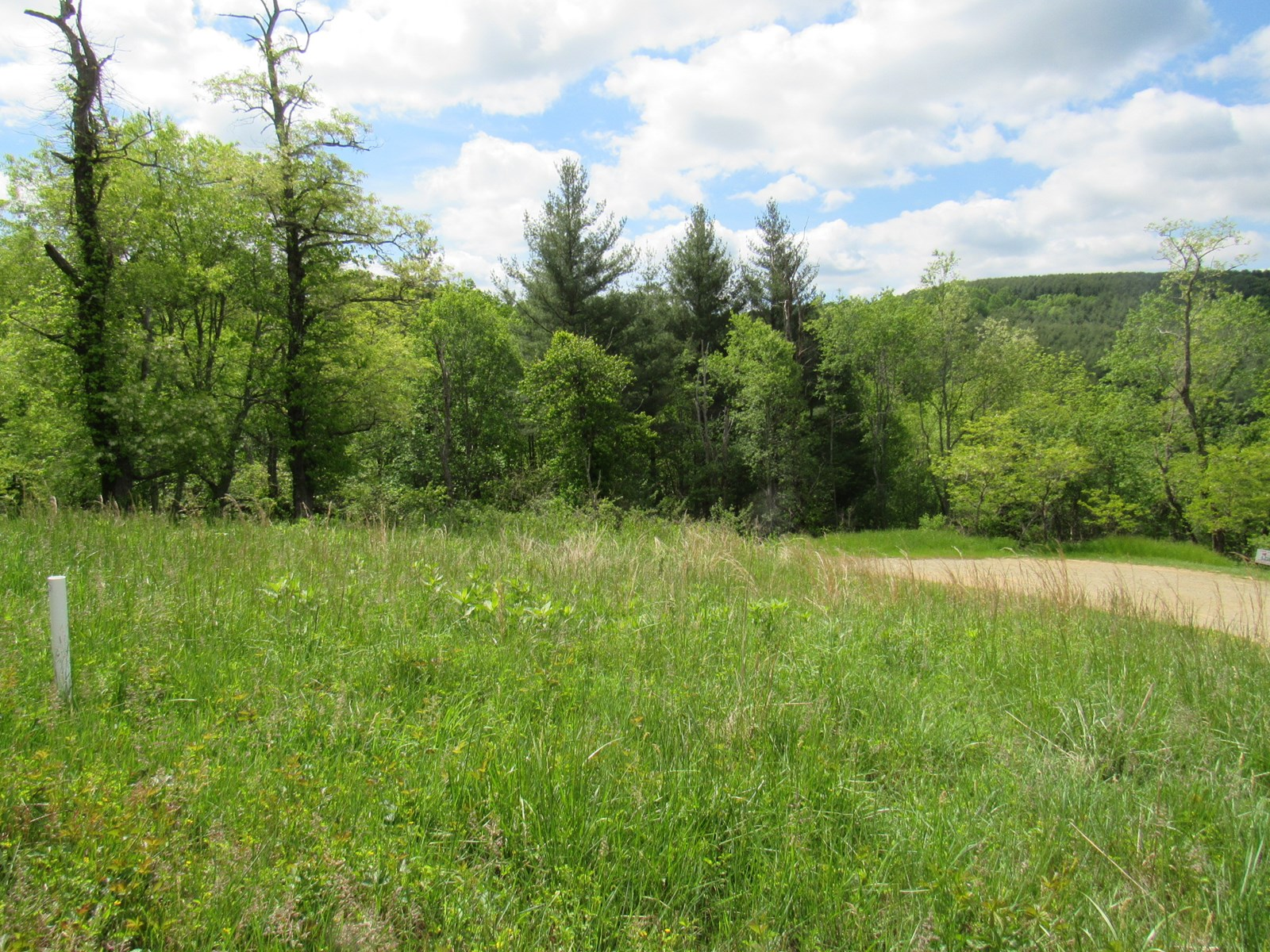 Building Lot for Sale in Piney Creek NC Alleghany Co