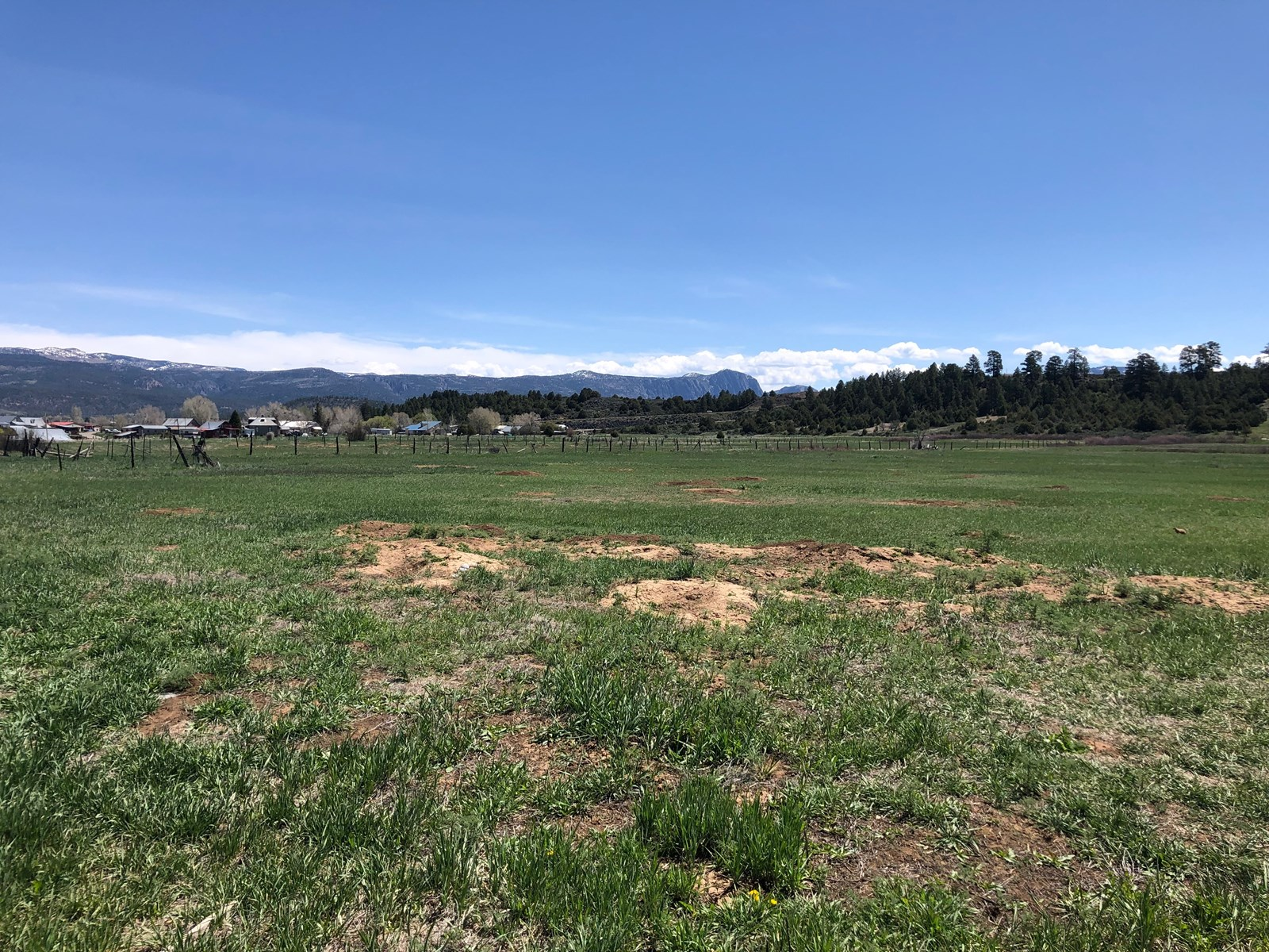 Irrigated Land for sale in Los Ojos close to Hatchery