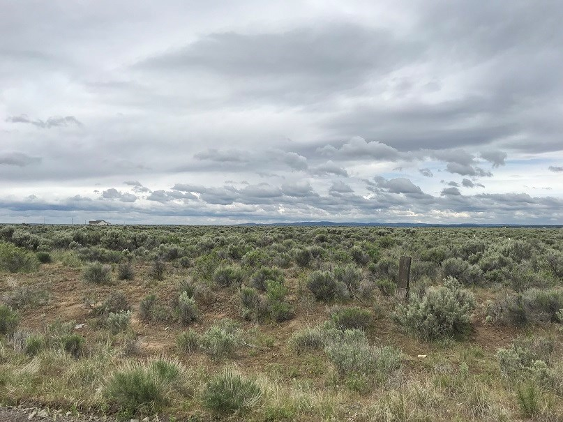 40 ACRES ON KERRY ROAD EAST OF BURNS OR