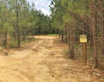 44 Acres Hunting Land for Sale w/ Lake Prentiss County, MS