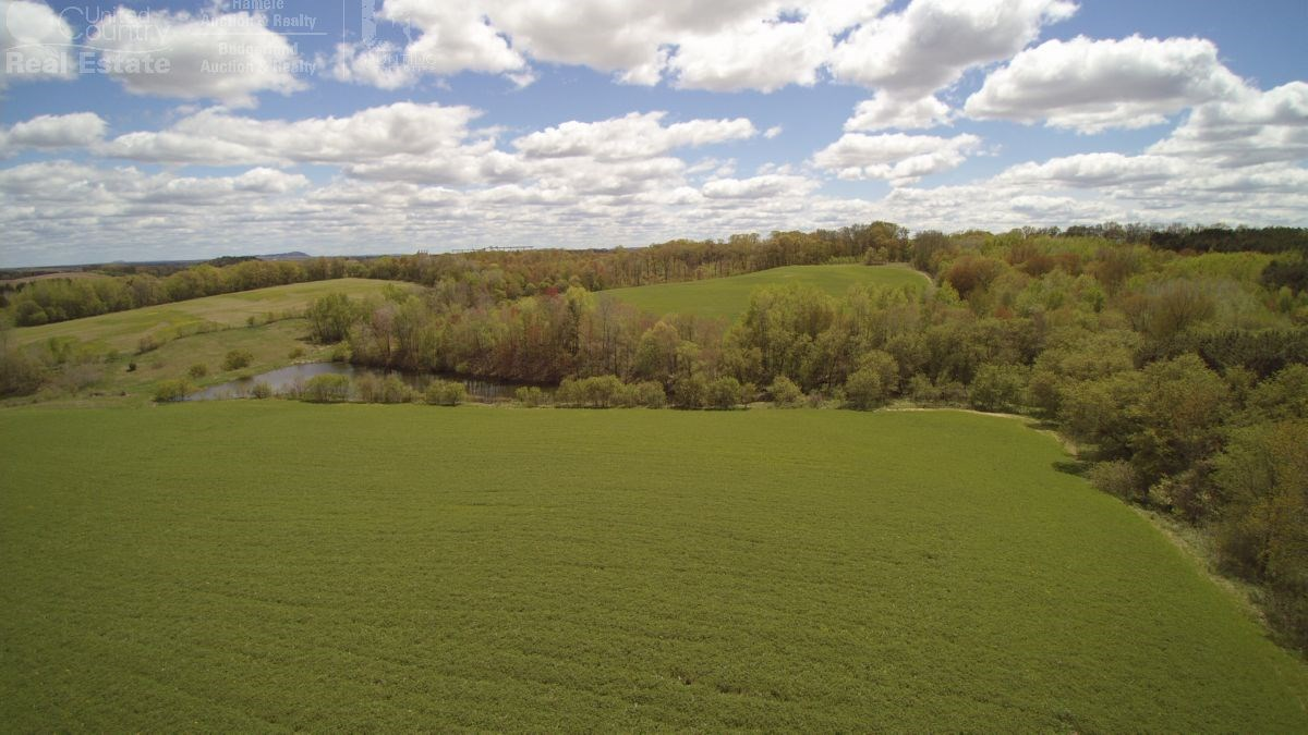 Gorgeous Secluded 40-Acre Parcel Clark County
