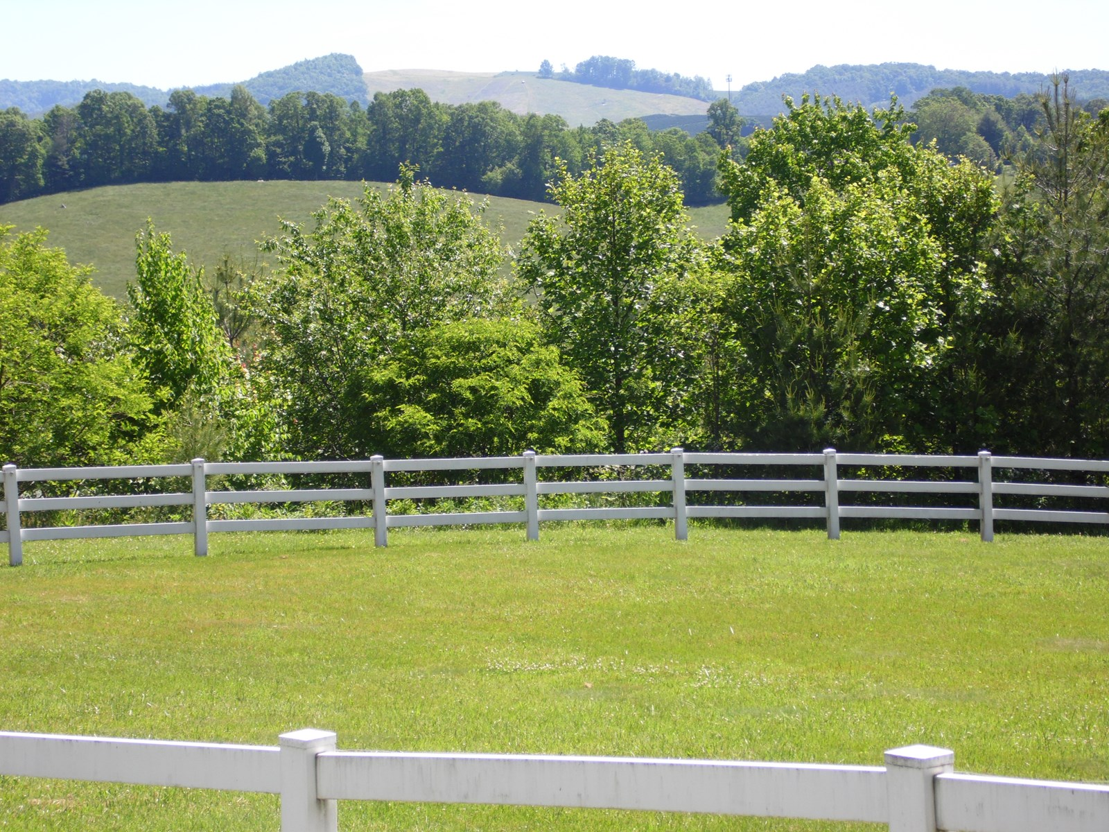 Mini Farm for Sale in Alleghany County NC