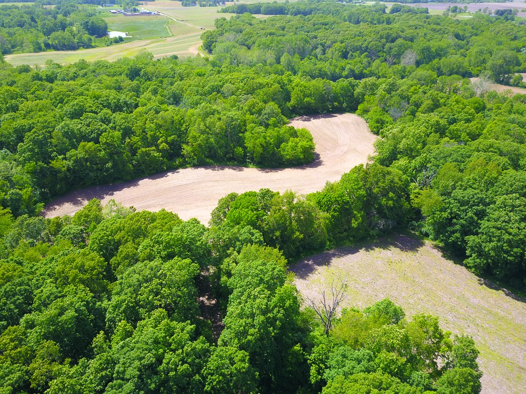 Macoupin County Illinois Hunting Property with Updated Home