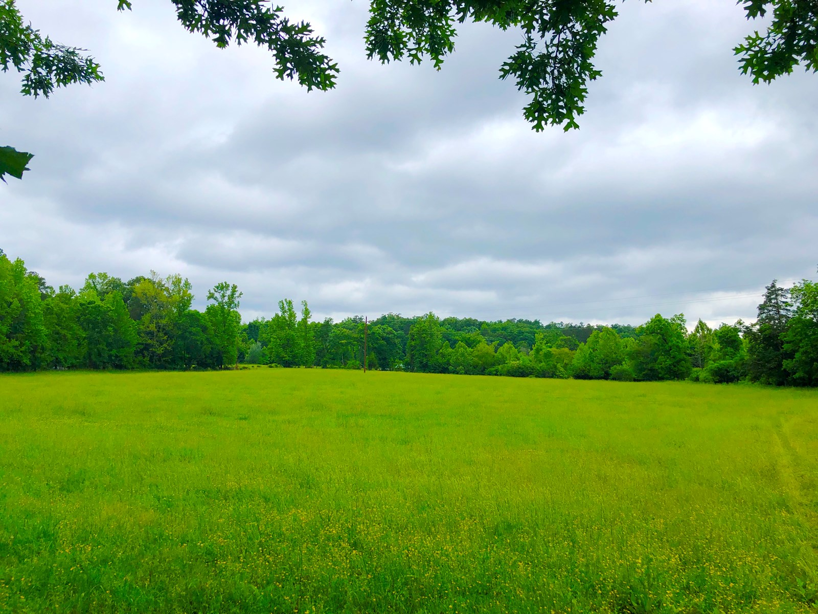 Land for sale, Pasture land, Hay, Hot Springs Village, AR