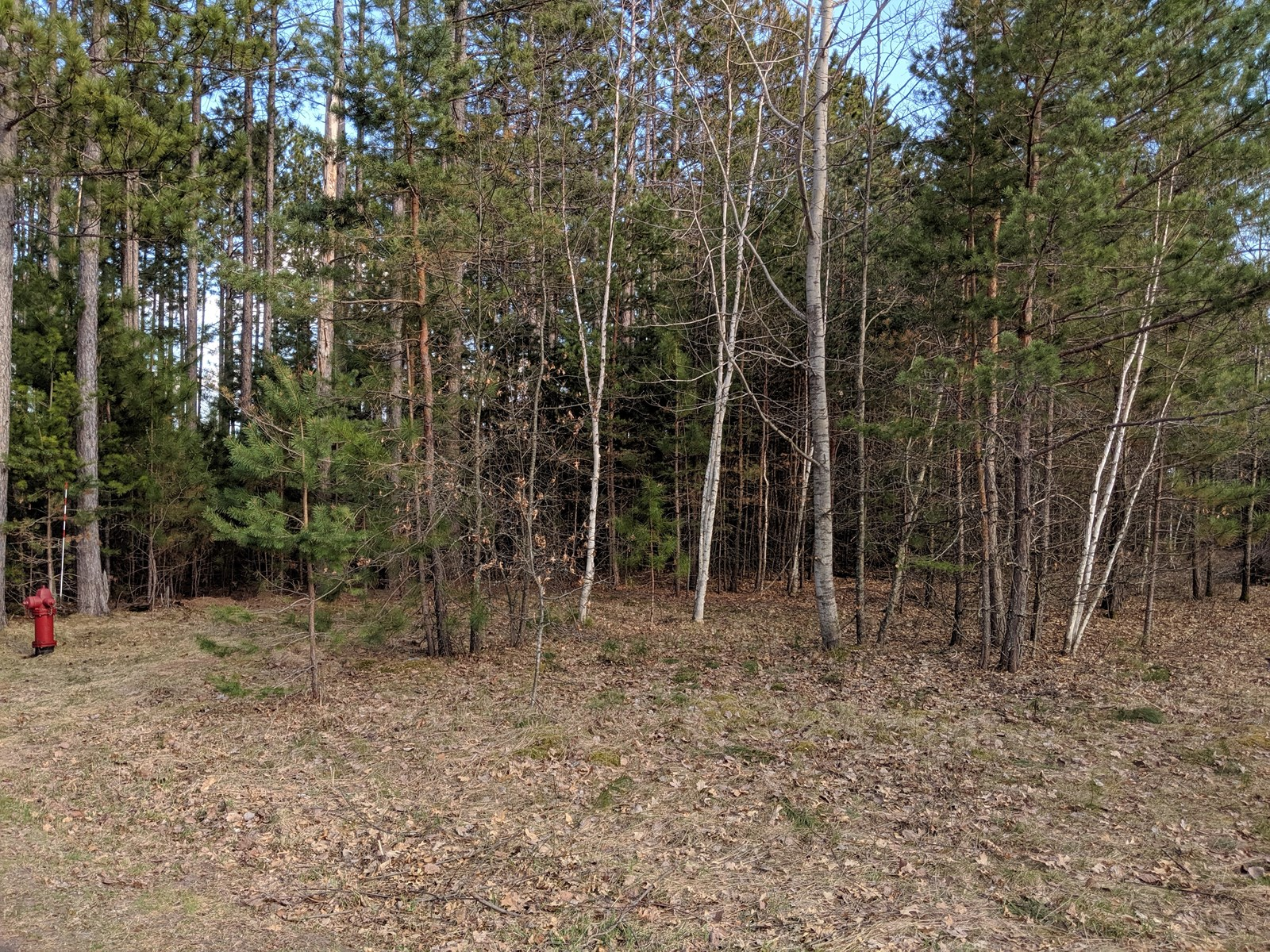 Building Lot For Sale in Town, Willow River, MN