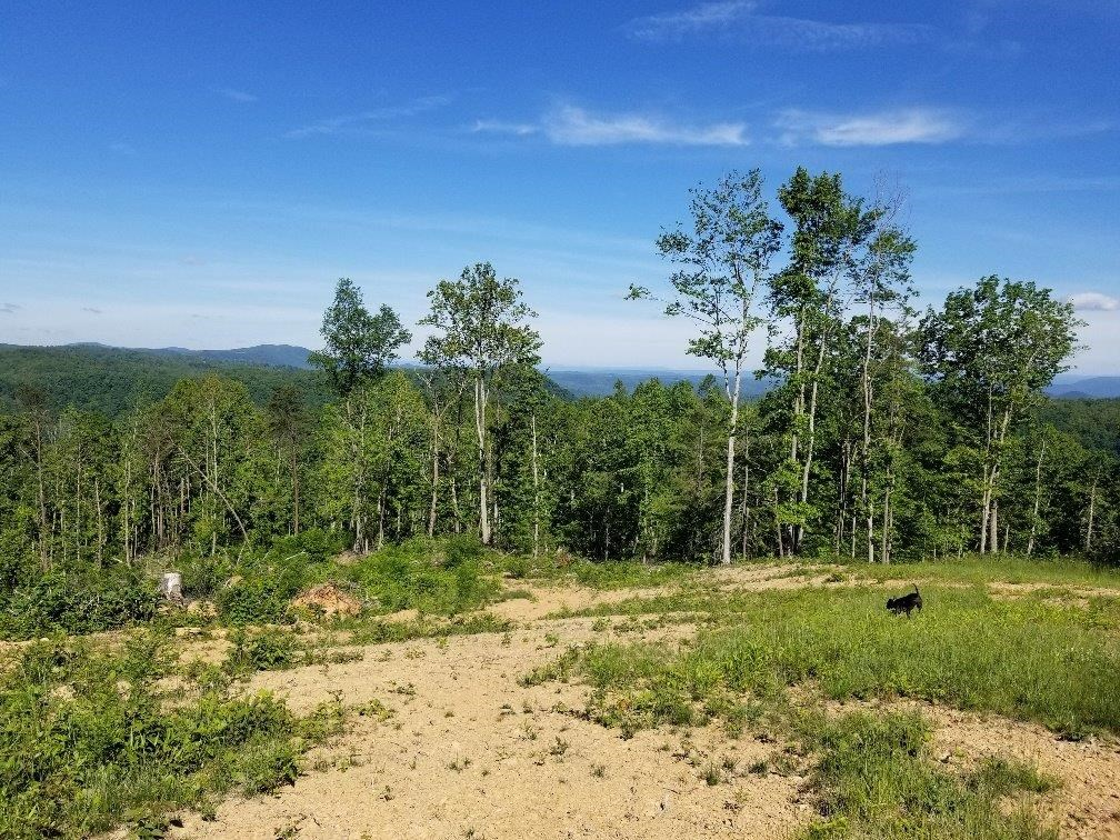 Timberland for Sale in Copper Hill VA