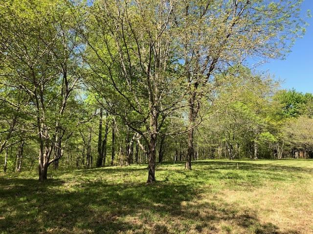 Gorgeous Lot in Williamson County, bring your Horses!