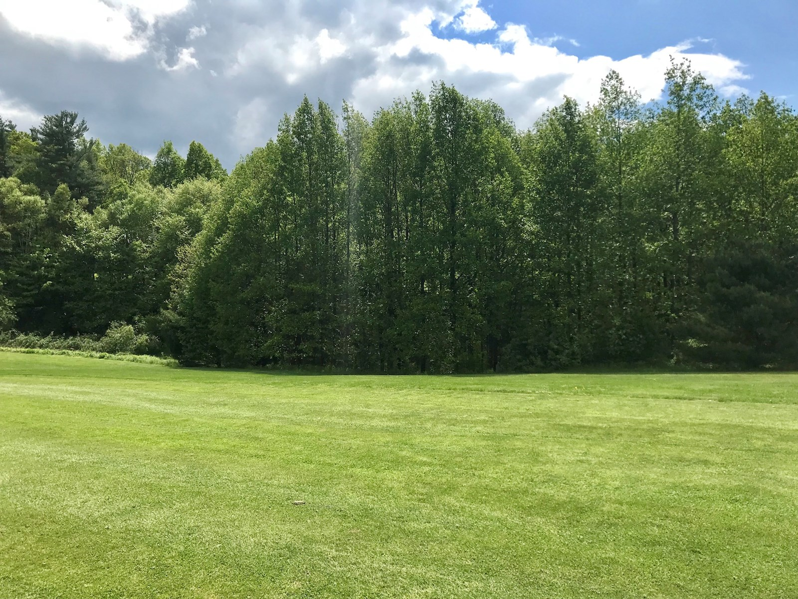 Lot for Sale on Golf Course!