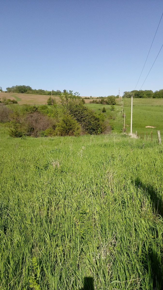 Land for sale in Elizabeth, IL