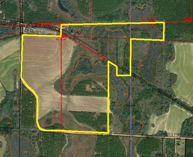 165 ACRES FOR SALE BLACK, ALABAMA